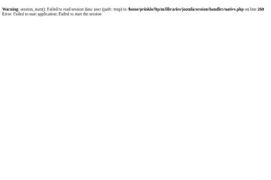 FHU PRINKLO - Strony internetowe Częstochowa