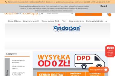WozkiNaZakupy.pl - Oprogramowanie Sklepu Internetowego Warszawa