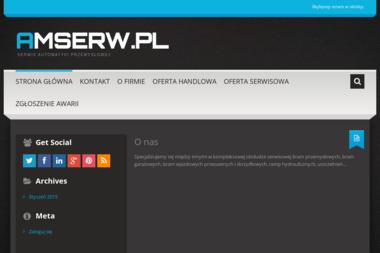 AMSERW Arkadiusz Zawadzki - Panel Ogrodzeniowy Ocynkowany Żyrardów