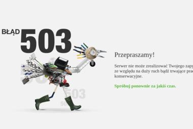 LEROY MERLIN Bielsko-Biała - Pokrycia dachowe Cieszyn