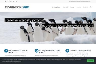 SemAge Piotr Czarnecki - Reklama w Mediach Kraków