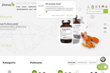 KENAY A. GRZEGOREK I WSPOLNICY SP. J. - Budowa Sklepu Internetowego Kalisz