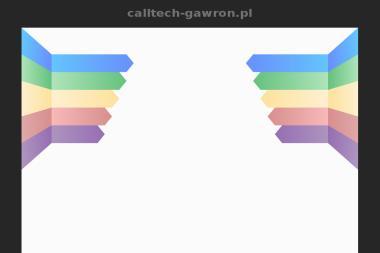 CALLTECH Bartłomiej Gawron - Montaż oświetlenia Komprachcice