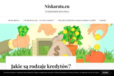 INTERHEAT Marcin Mrożek - Klimatyzacja z Montażem Leszno
