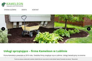 Kameleonlublin.pl - Odśnieżanie Dachów Lublin
