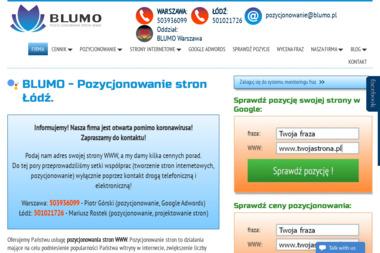 Blumo Strony - pozycjonowanie stron WWW - Reklama w Google Łódź
