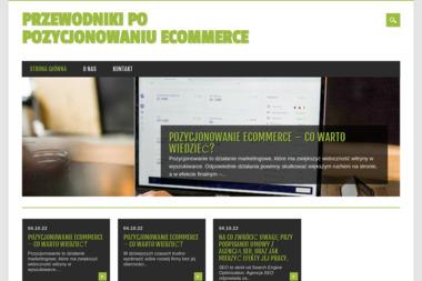 Rene Finanse - Biznes plan Sztum