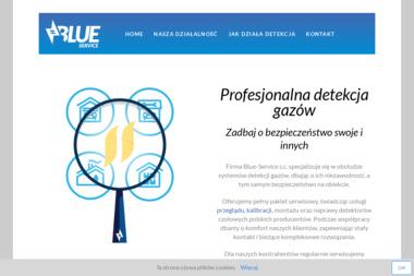 Blue-Service s.c. - Sterowanie Oświetleniem Kraków
