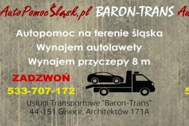 Multitrans Daria Burska - Firma transportowa Gliwice