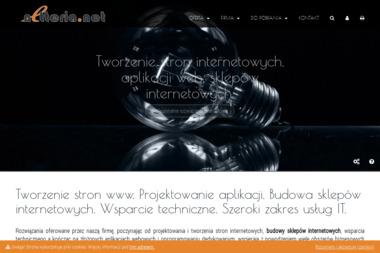 Netteria.NET - Strony WWW Kostrzyn nad Odrą