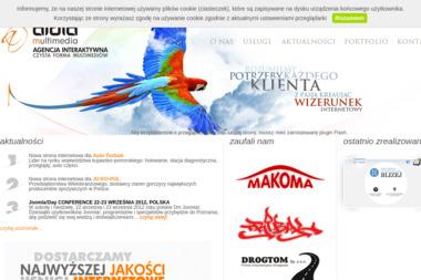 Aidia Multimedia - Pozycjonowanie stron Włocławek