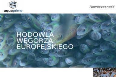 Aquaprime Sp. z o.o. - Hydraulik Grądy-Woniecko