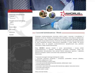 Aworus Sp. z o.o. - Pomoc domowa Surowa