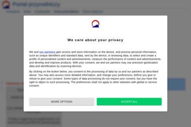 Bioarea. Mirosław Wójcik - Projektowanie Stron WWW Rabka-Zdrój