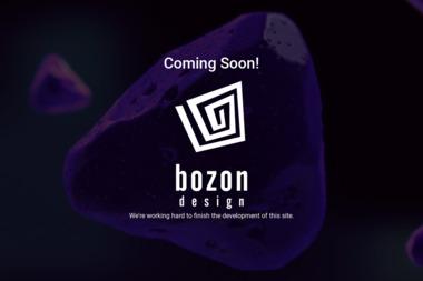 Studio Bozon Sp. z o.o. - Architekt wnętrz Kożuchów