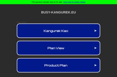 Transport Osobowy Kangurek Jarosław Pawlaczyk. Przewóz osób, transport pasażerski - Przewóz osób Wieruszów