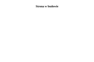 Agencja Interaktywna E-stetyka. Marketing internetowy, projekty reklamowe - Pozycjonowanie Stron Lubartów