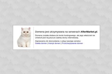 Eagle Eye - Naprawa Komputerów Janków Przygodzki