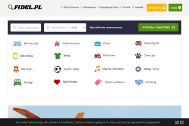 Fidel.pl. Tworzenie stron - Pozycjonowanie stron Wągrowiec