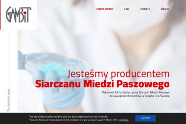 Agencja Celna Alfa S.C. Cezary Janiszewski Piotr Humański Agata Humańska - Transport ciężarowy krajowy Kutno