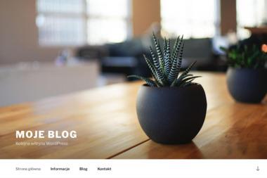 Eldam Elżbieta Stankowiak - Sprzątanie domu Ruda