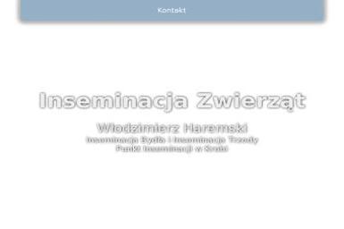 InsHar Bartłomiej Haremski - Webmasterzy Krobia
