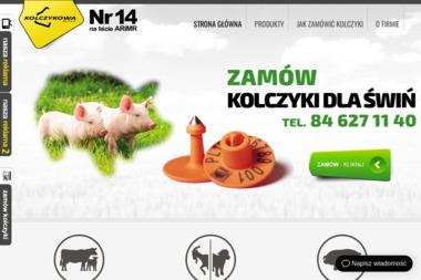 Kolczykowa Sp. z o.o. - Drukarnia Biłgoraj