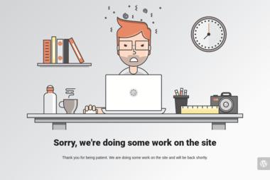 Lenig Logistic - Transport ciężarowy krajowy Zielona Góra