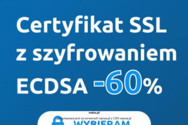 Centrum Edukacji Maius College Jadwiga Lizak - Agencja interaktywna Szczecin