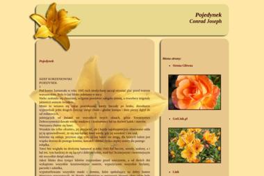 Krzysztof Cieślak Metal-Bud - Firmy inżynieryjne Stawiszyn