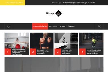 Miszu - Pozycjonowanie stron Białystok
