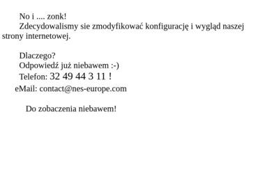 NES EuroCon Sp. z o.o. - SEO Katowice
