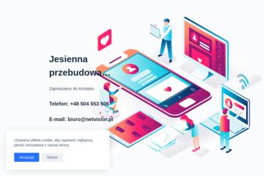 NetVISTOR Internet Solution - Pozycjonowanie stron Gliwice