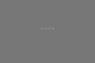 PPUH Novix Sp. z o.o. - Prace wysokościowe Gliwice
