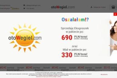 Alternative Multi Shop Sp. z o.o. - Sprzedaż Opału Toruń