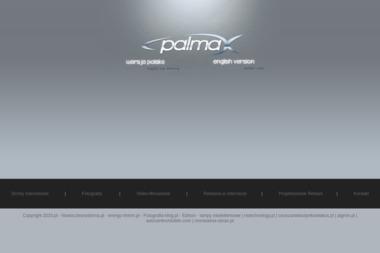 Palmax. Strony internetowe, pozycjonowanie, videofilmowanie - Pozycjonowanie Stron w Google Rzeszów