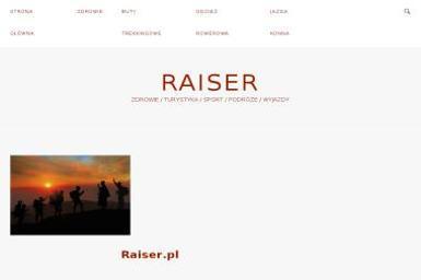 Konstrukcje Stalowe Raiser. Raiser, konstrukcje stalowe - Konstrukcje Inżynierskie Tarnów