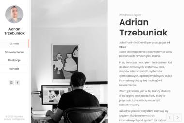Strong Sites - Adrian Trzebuniak - Pozycjonowanie stron Gruszczyn