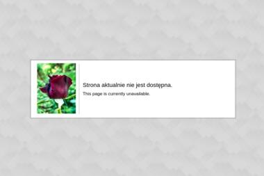 StudioArt.biz. Polskie strony internetowe, strony internetowe - Marketing Garcz