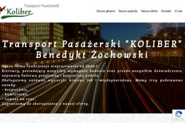 Żochowski Benedykt i Szczerkowski Włodzimierz Żochowski Benedykt Zakład Produkcyjno Handlowy S.C. II - Usługi Przewozowe Działoszyn