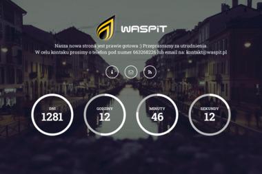 Waspit. Outsourcing informatyczny, usługi komputerowe, informatyk - Agencja Internetowa Gorzów Wielkopolski