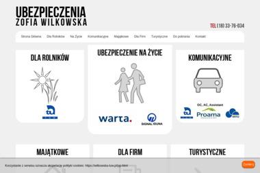 UBEZPIECZENIA Zofia Wilkowska - Ubezpieczenie samochodu Limanowa