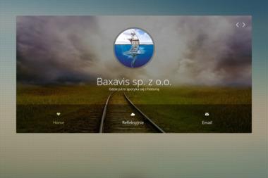 Baxavis Sp. z o.o. - Pozycjonowanie stron Łódź