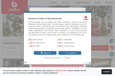 Budlex Sadowa Sp. z o.o. Spółka Komandytowa - Tynki Maszynowe Toruń