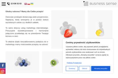 Business Sense Agencja Sem Sp. z o.o. Spółka Komandytowa oddział w Łodzi - Linki sponsorowane, banery Łódź