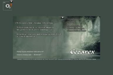 Cezarex Tła Fotograficzne i Akcesoria Studyjne - Sesje zdjęciowe Odolanów