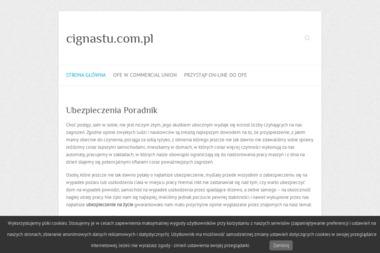 Cigna STU Towarzystwo Ubezpieczeń i Reasekuracji S.A. - Ubezpieczenie samochodu Olsztyn