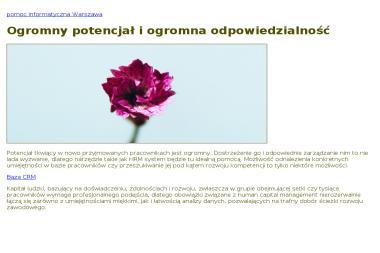 Przedsiębiorstwo Usługowo Handlowe Cortex Sp. z o.o. - Agencja ochrony Bydgoszcz