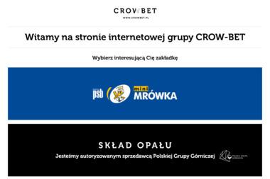 Firma Handlowo Produkcyjna Crow Bet Rafał Kruk - Betonowy Podjazd Jagodne