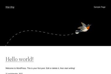Enigma Professional Engine. Przezwajanie silników elektrycznych - Serwisanci Bydgoszcz